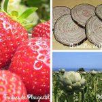 fraises-de-plougastel-andouilles-de-guemene-artichauts-de-bretagne